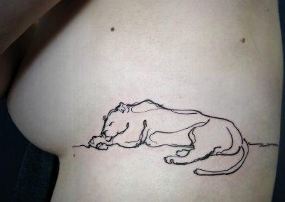 lionesstatt-a