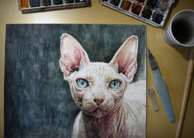 Watercolor - Sphynx
