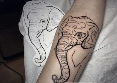 elephant-a